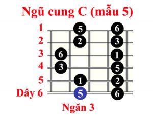am-giai-ngu-cung-c-5